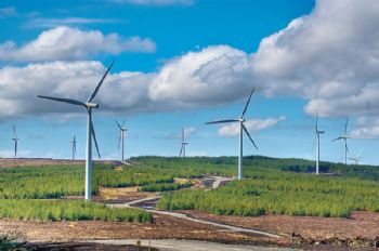 Wind power taking central role in UK's energy