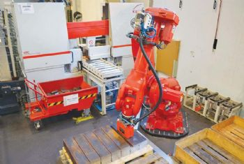 Automated sawing boosts output at Austrian firm
